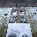 Snow at ECLA of Bard