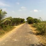 Landscape in Tamil Nadu