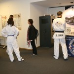 Martial Arts As Cultural Heritage