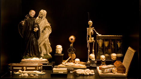 View of the Wunderkammer Olbricht