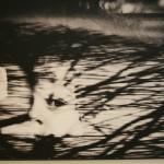 Kurir' by Nemanja Pancic (Serbia). 1st Prize Observed Portraits Singles.