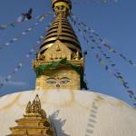 Swayambhunath's main stupa