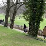 Goethe's Garden