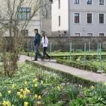 Goethe's vegetable garden