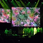 Swarming of pink sea-stars projection during Björk's performance
