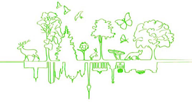 Berlin has begun transforming itself into a much more environmentally friendly city. (© berlingoesgreen.de)