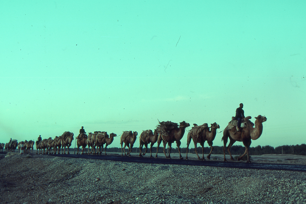 Caravans of trade on the Karakoram Highway at dusk