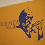Socratea01