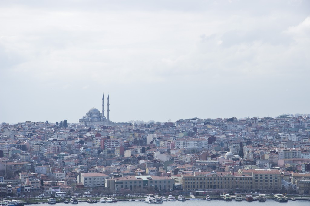 Istanbul view from the rooftop of our conference venue, Adahan Hotel. Photo: Inasa Bibic